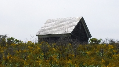 Wood Island 9
